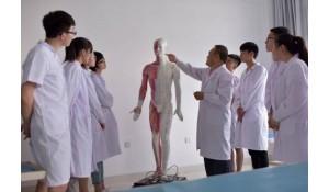 康复技术专业(中专衔大专)