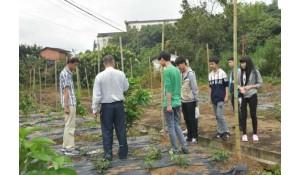 现代农业技术