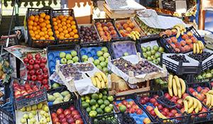 食品质量与安全专业