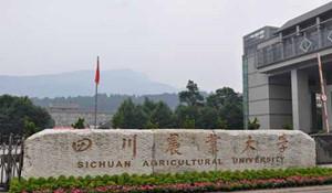 四川农业大学远程与继续教育学院