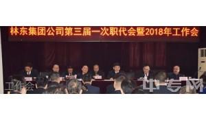 贵州林东矿业集团有限责任公司技工学校