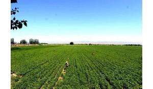 生态农业技术