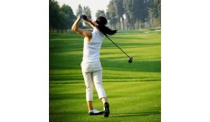 高尔夫管理