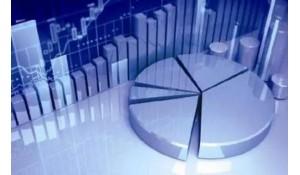 经济信息管理(含财会)