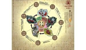 藏医医疗与藏药