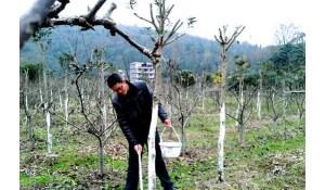 林业技术专业