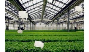农业技术系