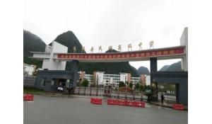 长顺县民族高级中学