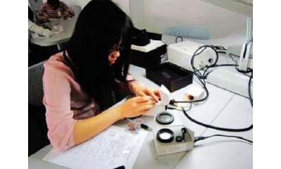 珠宝玉石加工与销售