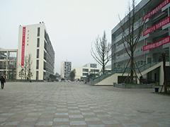 2020年四川商务职业学院报名方式及报名入口