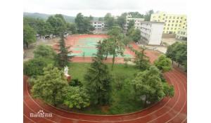 清镇市卫城中学