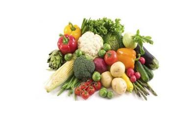 营养学专业