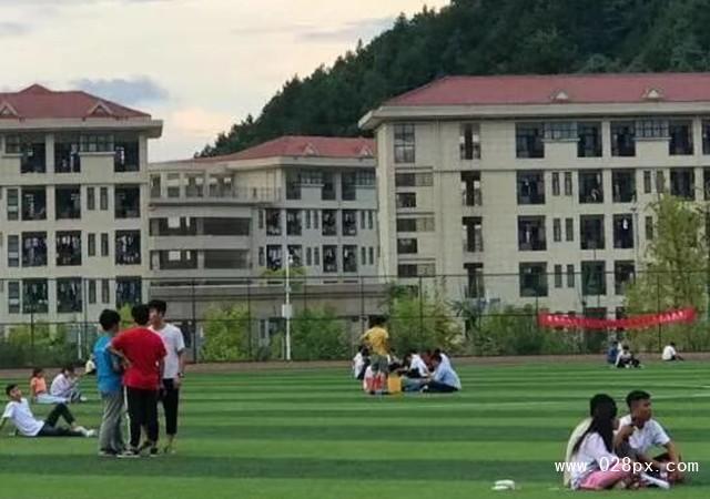 贵州电子科技职业学院招生计划