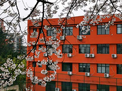 贵州交通技师学院招生计划