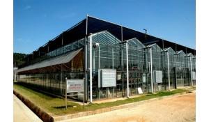 农业综合技术