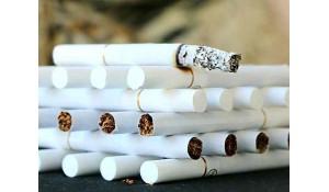烟草生产与加工