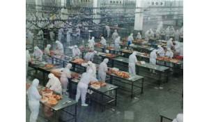 食品加工技术