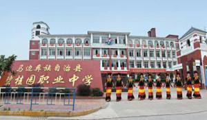彝族自治县碧桂园职业中学