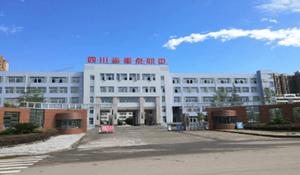 阆中江南高级职业中学