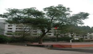 蓬安县济渡职业中学