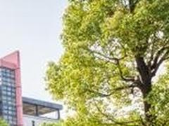 四川音乐学院继续教育学院招生分数线