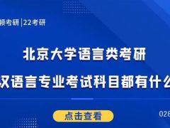 北京大学语言类考研汉语言专业考试科目都有什么?